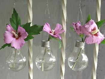 Ampoulesvases